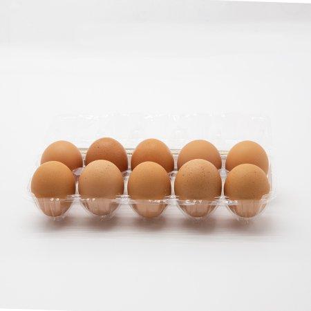 乳酸卵10_2